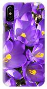 Purple Crocus Spring Welcome IPhone Case