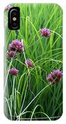 Purple Flowers And Grasses IPhone Case