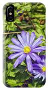 Purple Flowers Lookiing Like Daisies IPhone Case