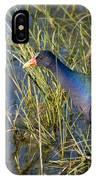 Purple Gallinule 2 IPhone Case