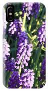 Purple Grape Hyacinth  IPhone Case