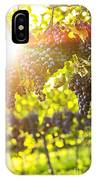 Purple Grapes In Sunshine IPhone Case