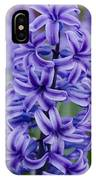 Purple Hyacinth IPhone Case