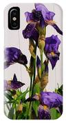 Purple Iris Stalk IPhone Case