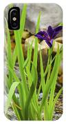 Purple Irises Growing In Waterfall IPhone Case