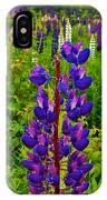 Purple Lupine On Campobello Island-new Brunswick  IPhone Case