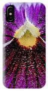 Purple Pansy In Pollen IPhone Case
