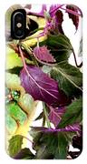 Purple Passion And Dragonfly Pot IPhone Case