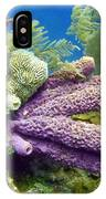 Purple Sponge IPhone X Case