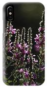 Purple Wild Flowers - 2 IPhone Case