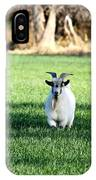 Pygmy Goat IPhone Case