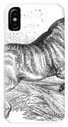 Quagga, Historical Illustration, 1874 IPhone Case
