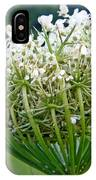 Queen Anne's Lace Flower Unfolded IPhone Case