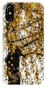 Quiet Charm Of Autumn IPhone Case