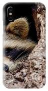 Raccoon In Tree IPhone X Case