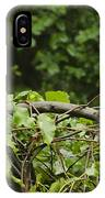 Raccoon Out On A Limb IPhone Case