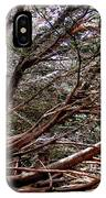 Ragged Point Tree IPhone Case