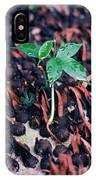 Rain Forest Seedling, Indonesia IPhone Case
