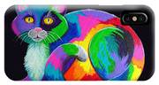 Rainbow Calico IPhone Case
