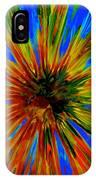 Rainbow Exuberance IPhone Case
