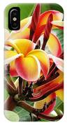 Rainbow Plumeria - 1 IPhone Case