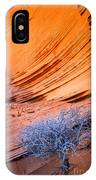 Rainbow Rocks Dead Bush #1 IPhone Case