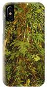Rainforest Colors IPhone Case
