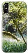 Rainforest Landscape IPhone Case