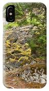 Rainforest Rock Slide IPhone Case