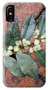 Rainy Day On Fallen Leaves IPhone Case