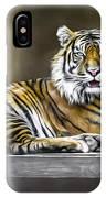 Ranu The Sumatran Tiger IPhone X Case