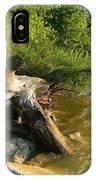 Raw Lake Erie Shore IPhone Case