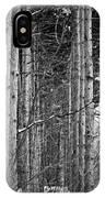 Reaching Pines IPhone Case