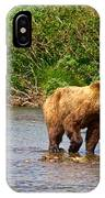 Ready To Pounce On A Salmon  In The Moraine River In Katmai National Preserve-ak IPhone Case