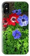 Red And Blue Anemones IPhone Case