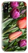 Red And Purple Tulips IPhone Case