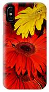 Red And Yellow Glory - The Flowers Of Summer - Gerbera Daisies IPhone Case