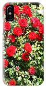 Red And Yellow Roses IPhone Case
