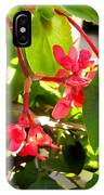 Red Begonia Peaking Through The Leaves IPhone Case