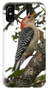 'red-bellied Woodpecker' Melanerpes Carolinus  IPhone Case