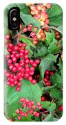Red Berries And Green Leaves IPhone Case