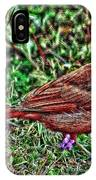 Red Bird Art IPhone Case