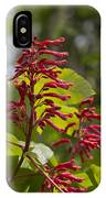 Red Buckeye - Aesculus Pavia - Wildflowers IPhone Case