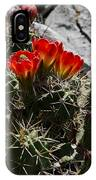 Red Cactus Flower  IPhone Case