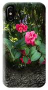 Red Camellias IPhone Case