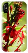 Red Cardinal Flower IPhone Case