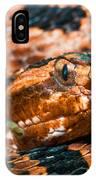 Red Carolina Pygmy Rattlesnake IPhone Case