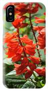 Red Flower IPhone X Case