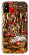 Red Flower Petals In Creek In Lower Palm Canyon In Indian Canyons Near Palm Springs-california IPhone Case