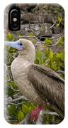 Red-footed Booby Galapagos Islands IPhone Case